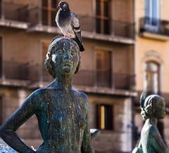 Fountain Statue - Plaza De La Virgin - Valencia ( Panasonic Lumix GX8 & mZuiko 60mm F2.8 Macro Prime) (markdbaynham) Tags: city urban valencia statue lumix prime town spain evil panasonic metropolis es 60mm zuiko f28 dmc csc 20mp gx8 spainish m43 zd mft valencian mirrorless u43 micro43 microfourthirds lumixer mzuiko m43rd u43rd zuikolic