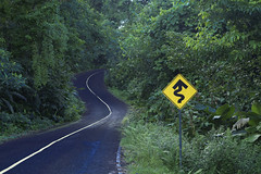 Good there are signs showing the way... (dlorenz69) Tags: road strasse wald urwald kurven curved bend sign warning warnung hinweis zeichen schild panama mountains