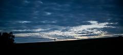 Sydney Park (bigboysdad) Tags: landscape landscapes blue nikon silhouette d800e nokton voigtlander 58mm newtown sydney australia