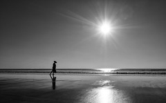 (Magdalena Roeseler) Tags: myanmar beach bw monochrome sun see ngwesaung asia olympus minimal
