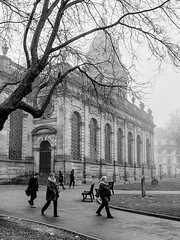 Cathedral in Light Fog (Mac McCreery) Tags: fog stphilipscathedral birminghamuk birmingham uk england city tree streetphotography architecture blackandwhite monochrome pentaxk5iis sigma1770dcmacro