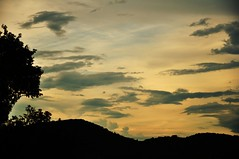 a golden view (Ruby Ferreira ®) Tags: sunset silhuetas silhouettes montain hill montanha sky clouds branches trees