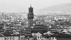 Palazzo Vecchio B/W (All Chefs Are Bastards) Tags: firenze tuscany italy blackandwhite monochrome monochromatic cityscape florence signoria palazzo toscana italia bianconero