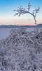 Cerknica Lake and Triglav (happy.apple) Tags: otok cerknica slovenia si cerkniškojezero cerknicalake slovenija winter zima intermittentlake presihajočejezero morning snow sneg julijskealpe julianalps mountains triglav