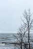 Зима на Балтике (klgfinn) Tags: balticsea breakwater coast landscape sea shore skyline storm tree water wave winter балтийскоеморе берег вода волна волнолом волнорез горизонт дерево зима море пейзаж шторм