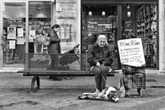 The friend of animals (carlo tardani) Tags: pisa toscana fotografiaurbana urban urbanphotography b bianconero blackandwhitephotos cani bestportraitsaoi platinumheartaward