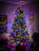 9:365 - Breaking from the theme to say goodbye (LostOne1000) Tags: 9jan17 365the2017edition pentax cy365 3652017 lights tree christmastree 9365 decorations day9365 goodbye pentaxk3ii christmaslights feastofthebaptism
