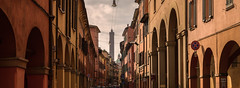 Shades of the Red City (Pietro Faccioli) Tags: ancient arcades arch architecture bologna building city clouds cloudy colour columns downtown emilia emiliaromagna historic historical italy landmark oldtown panorama portici red road shade shadow sky street tower town urban windows pietrofaccioli faccioli pietro