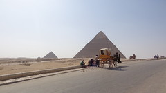The Pyramids of Giza (Rckr88) Tags: the pyramids giza thepyramidsofgiza cairo egypt africa travel travelling pyramid thepyramidscomplex pyramidsanddesert camelsatthepyramids street streets road roads relic relics ancient ancientegypt