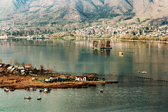 Dal Lake,Srinagar,India. (Rambonp:loves all creatures of this universe.) Tags: dallake srinagar jk kashmir tulips flowers yellow wallpaper red white trees green nature park day india paradise blue canon landscape sky clouds silhouette snow mountains hills hillstation touristplace tourism
