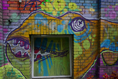 Animal of Berlin CiTTi GrafiTTI 2016 (Marco Braun) Tags: fisch fish poisson kopf head tête berlin 2016 streetart graffiti farbig coloured colourful bunt deutschlandgermany window fenêtre fenster variopinto