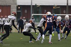 4D3A3019 (marcwalter1501) Tags: minotaure tigres strasbourg footballaméricain football sportdéquipe sport exterieur match nancy