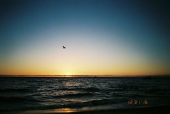 (envee.) Tags: 35mm photography still shoot film is dead fujifilm fuji colour iso 200 cardia dualp mordialloc summer end 2016 december dec analogue camera point pointandshoot sunset ocean sea sky