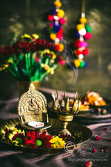 Holi Hai... (Sia Krishna) Tags: foodstyling food foodie foodblogger foodphotography foodstilllifephotography indianfood indiancuisine sweets diwalisweets indiansweets mithai monsoonspice