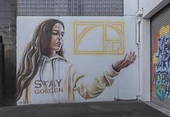 CTO Brunswick 2017-03-13 (5D_32A6083) (ajhaysom) Tags: cto brunswick streetart graffiti melbourne australia canoneos5dmkiii canon1635l