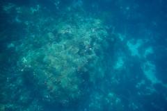 20150816-DSC_6257.jpg (d3_plus) Tags: sea sky fish beach japan scenery underwater diving snorkeling  shizuoka    apnea izu j4  waterproofcase    skindiving minamiizu       nikon1 hirizo  1030mm  nakagi 1  nikon1j4 1nikkorvr1030mmf3556pdzoom beachhirizo misakafishingport  1030mmpd nikonwpn3 wpn3