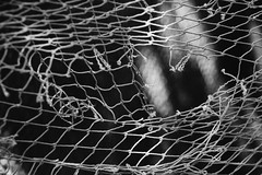 IMG_7907.JPG (esintu) Tags: blackandwhite bw white black macro net turkey blackwhite fishing turkiye fishnet istanbul 600d garipce