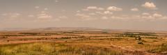 DSC_2069-Pano (Jorge kaplan) Tags: africa nikon kenya safari mara d750 nikkor kenia masai 28300mm masaimara