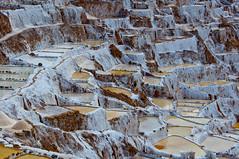Peru_0176 (Radimek) Tags: travel peru southamerica inca salt adventure sacredvalley maras saltevaporationponds urubambavalley salinasdemaras