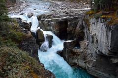 Sunwapta Falls (J F Wolford) Tags: canada fall colors waterfall jasper falls waterfalls alberta sunwapta