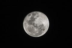 Death Star (ROGU !) Tags: chile moon de noche la nikon san paz concepcion bio luna 300mm pedro