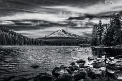Hood On The Horizon (Bryan Flynn) Tags: trees blackandwhite bw white mountain lake black monochrome oregon volcano trillium blackwhite high rocks mt dynamic shore cascades mthood hood range hdr highdynamicrange trilliumlake stratovolcano