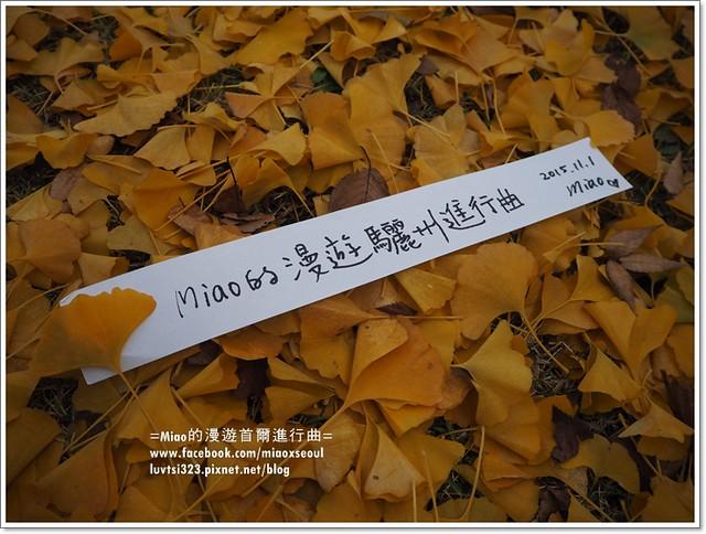 여주오곡나루축제46