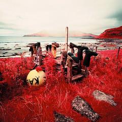 Camas Sgiotaig (Mark Rowell) Tags: 120 6x6 film mediumformat ir scotland highlands hasselblad infrared expired swc 903 eigg aerochrome camassgiotaig traighnabigil