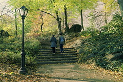 Couple Strolling Along Path In Central Park (nrhodesphotos(the_eye_of_the_moment)) Tags: nyc autumn trees people man nature glass lamp leaves metal stone stairs season flora women streetlight rocks autum bokeh outdoor centralpark manhattan candid perspective greenery pathway plantlife wwwflickrcomphotostheeyeofthemoment theeyeofthemoment21gmailcom dsc07942centralpark