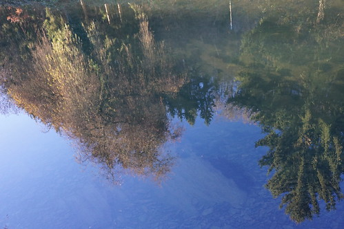 Reflections 4-12-16