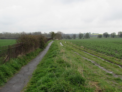 Between Letcombe Regis and Wantage (Oxfordshire)