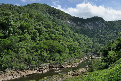 San Ignacio - River Landscape