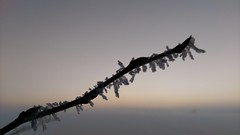 Frost Tree Nature Silhouette No People Landscape Sunset Beauty In Nature Outdoors Water Beauty In Nature Snowing Cold Temperature Nature Snow Weather Sky Extreme Weather Silhouette (O901) Tags: tree nature silhouette nopeople landscape sunset beautyinnature outdoors water snowing coldtemperature snow weather sky extremeweather