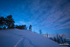 Twilight Snowshoe (kevin-palmer) Tags: bighorn sheridan bighornnationalforest bighornmountains january winter snow snowy evening irix15mmf24 twilight blue sky night stars starry astronomy astrophotography tracks trail snowshoeing clouds burnt trees nikond750