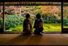 寧靜 (~neko x~) Tags: kyoto 京都 日本 japan 旅遊 旅行 瑠璃光院 maple silence 和服 girl window 楓葉 trip travel sony a72 loxia zeiss 蔡司 21mm