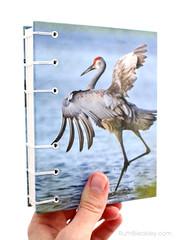 Cranes Journal handmade by book artist Ruth Bleakley - 2 (MissRuth) Tags: bookbinding journal handmade hardbound handbound copticstitch naturejournal naturebook artjournal bookarts journaling writing cranes birdingjournal lifelist sandhillcrane