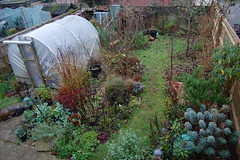 Looking Down on the Back Garden - December 2016 (basswulf) Tags: backgarden polytunnel d40 1855mmf3556g lenstagged unmodified 32 image:ratio=32 permissions:licence=c 20161217 201612 3008x2000 garden normcres oxford england uk lookingdownonthegarden