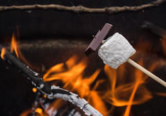 Marshmallows & Chocolat (Explored) (Sammyboy77) Tags: marshmallows chocolate toastedmarshmallows outdoor toasting sticks bonfire campfire event sammyboy77