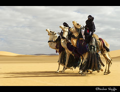 Happy New Year 2017 (Bashar Shglila) Tags: libya sahara desert tuareg camels knight sky clouds sunny libyan niger algeria festival 2017