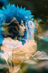 蕊の名前 -say a silent prayer (Hodaka Yamamoto) Tags: lomography summer sunflower portrait flower double doubles doubleexposure multipleexposure multiexposure negative filmcamera filmphotography film turquoise