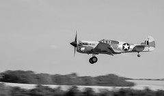 (vipmig) Tags: p40 aviation aviationphotography aviationhistory aviator fighteraircraft flight flyingmachine flyinglegends flying warbird military militaryaviation militaryhistory militarymachine usaaf ww2 history blackandwhite blackwhite monochrome duxford