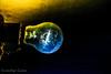 Simple Bulb (SuvadipGuhaD5200) Tags: nikon nikond5200 nikkor night nikonlove nightphotography nightlight indoor milkyway milky macro lamp bulb abstract booth handmade handheld lowlight light love hollywood professional professionalmacro strobe