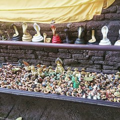 A group of snakes which I learned from the Internet just now is called a 'bed.' Bed of snakes outside a temple at Wat Jed in Chiang Mai. . . . #chiangmai #thailand #travelasia #travelnow #locationindependent #cluelessnomad #digitalnomad #snakes #southeast (cluelessnomad) Tags: a group snakes which i learned from internet just now is called bed outside temple wat jed chiang mai chiangmai thailand travelasia travelnow locationindependent cluelessnomad digitalnomad southeastasia wanderlust snaketemple