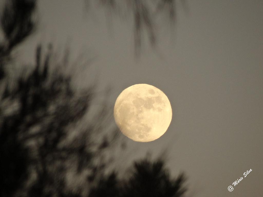 Águas frias (Chaves) - ... a lua espalhando a sua suave luz ...
