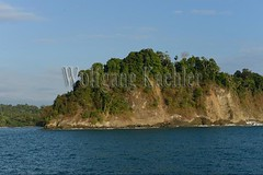 60071771 (wolfgangkaehler) Tags: 2017 costarica southamerica southamerican latinamerica latinamerican centralamerica costarican nationalpark tropic tropical tropicalrainforest tropicalrainforests tropics manuelantonionationalpark manuelantonionationalparkcostarica manuelantonionp viewfromboat view viewfromsea viewfromship island rocky rockycoastline cliff