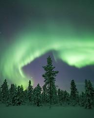 Sweden (peterspencer49) Tags: peterspencer peterspencer49 aurorasborealis aurora nightphotography nordlys northernlights winterview winter