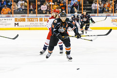 "Missouri Mavericks vs. Allen Americans, March 10, 2017, Silverstein Eye Centers Arena, Independence, Missouri.  Photo: © John Howe / Howe Creative Photography, all rights reserved 2017 • <a style=""font-size:0.8em;"" href=""http://www.flickr.com/photos/134016632@N02/33023731790/"" target=""_blank"">View on Flickr</a>"
