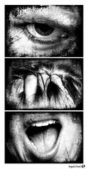 Aaaarrgh !!! (AngelsPixel) Tags: triptyque monochrome blackwhite blackandwhite noirblanc noiretblanc noir blanc black white colere rage anger fury furious fuck enculé enfoiré filsdepute sunofabitch oeil yeux bouche main eye hand mouth dent teeth levre lip langue tongue cheveu hair