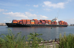 ZIM TARRAGONA in New York, USA. August, 2015 (Tom Turner - SeaTeamImages / AirTeamImages) Tags: nyc usa newyork water port harbor marine ship unitedstates harbour transport vessel spot cargo container pony maritime transportation statenisland containership zim bigapple channel spotting waterway kvk tomturner killvankull zimtarragona