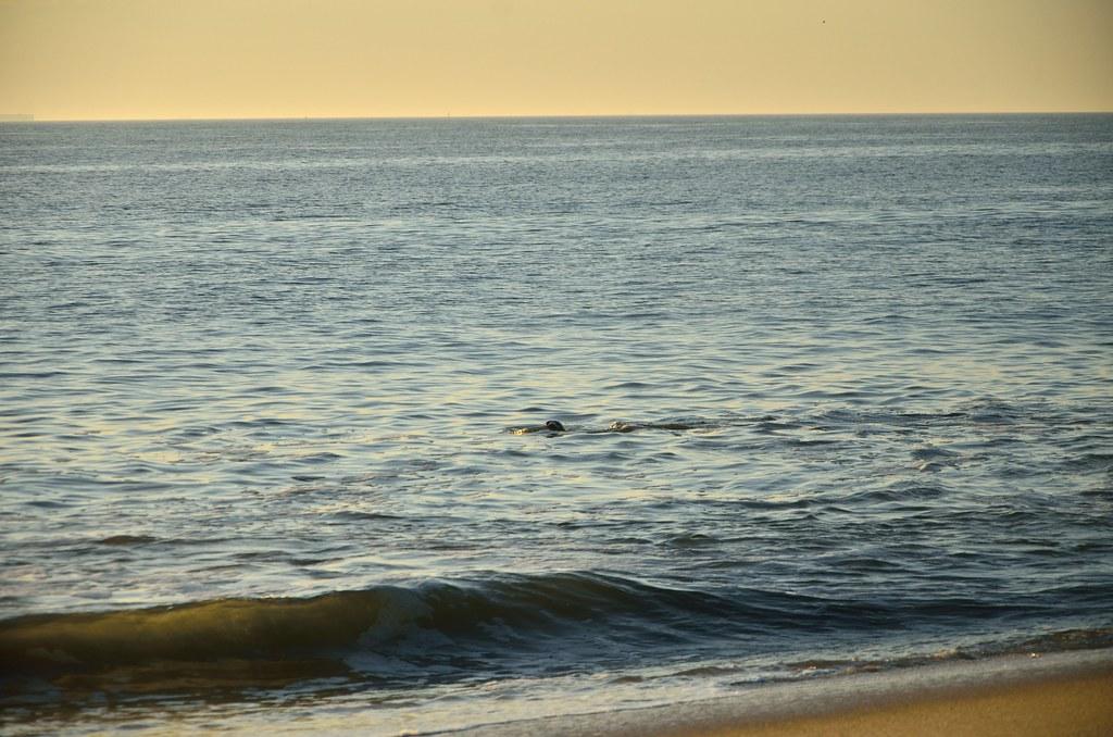 Beach gunnison bdsm photo 75